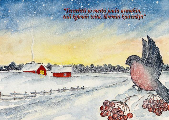 joulukortti joulukortti, lintu, punatulkku, J52 | Tomin Kuva Ky Verkkokauppa joulukortti